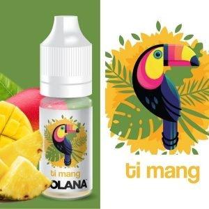 Les Essentiels ananas TI MANG